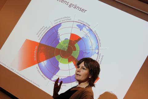 Elin Röös, forskare på Sveriges lantbruksuniversitet
