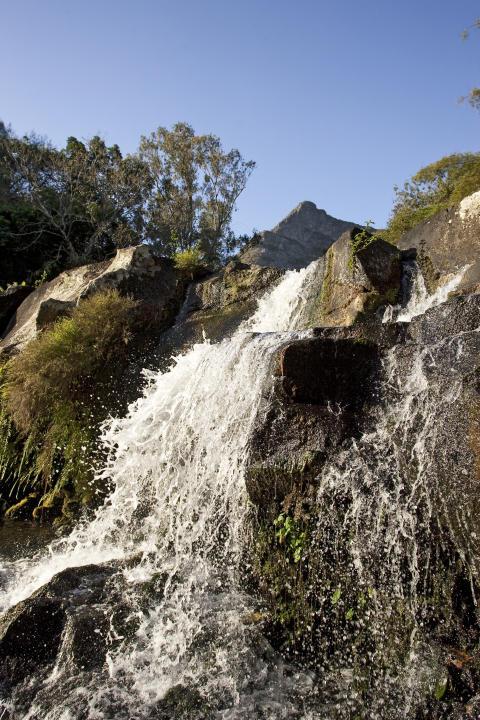 Mauritius_Wasserfall 3©MTPA_Bamba