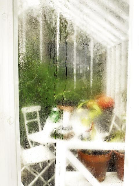 garden__111017_hr_0083