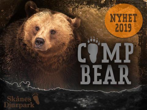 Skånes Djurpark lanserar Camp Bear - en unik vildmarksupplevelse där du övernattar i björnarnas ide