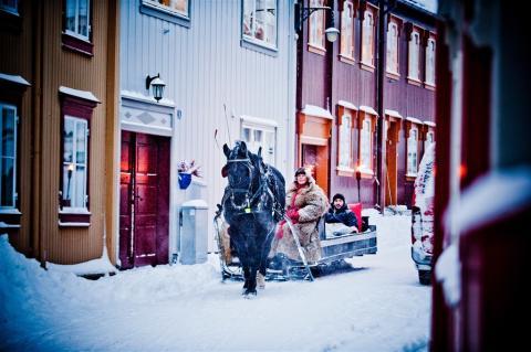 Häst och släde i Röros Thomas Rasmus Skaug - visitnorway.com
