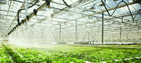 Global Smart Greenhouse Irrigation System Market Applications, End Users and Companies Future Opportunities Analysis 2018-23 profiling key players: Netafim, Rain Bird, TORO, Valmont, Hunter, LINDSAY, NELSON, Reinke, T-L, John Deere