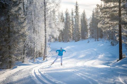 Vinterlige Trysil