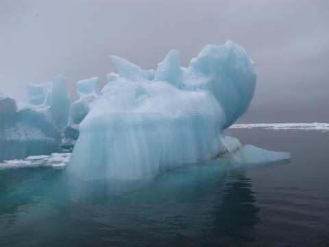 Akvaplan-niva bidrag til miljøovervåking på Svalbard og Jan Mayen