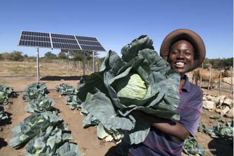 Exciting new project launched to help young farmers in Kenya earn an income they can rely on