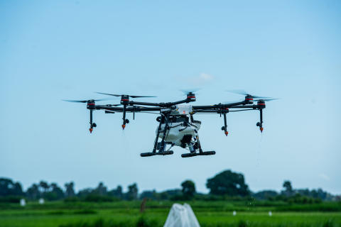 DJI Agras MG1-S Spray Drone flying over rice fields