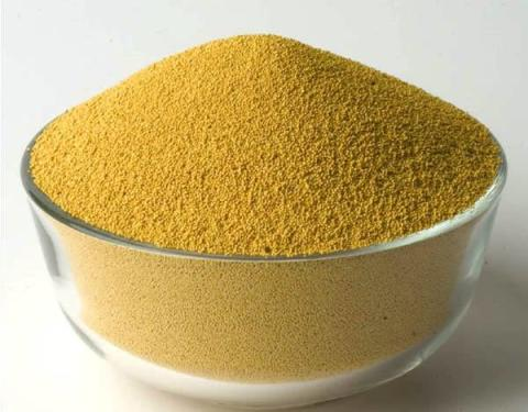 Global Feed Yeast Industry Market Research Report 2017