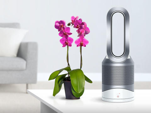 Dyson Pure hot+cool Link_Pollen