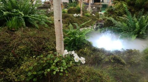 Skogsbad och stressfritt när Hvilan-elever bygger idéträdgård på Vår Trädgård