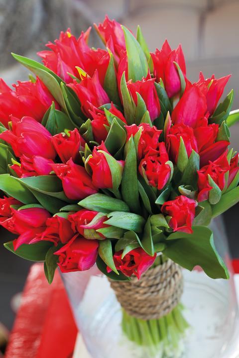 Ett fång röda tulpaner till Valentine!
