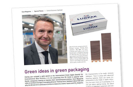 Green ideas in green packaging article