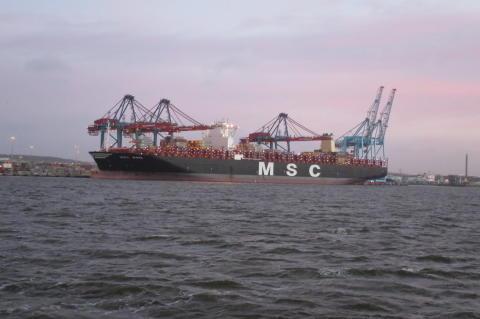 MSC Maya i Skandiahamnen
