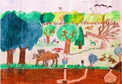 Pressinbjudan: 1 500 elever bjuds in till trädplantering i Bruces skog
