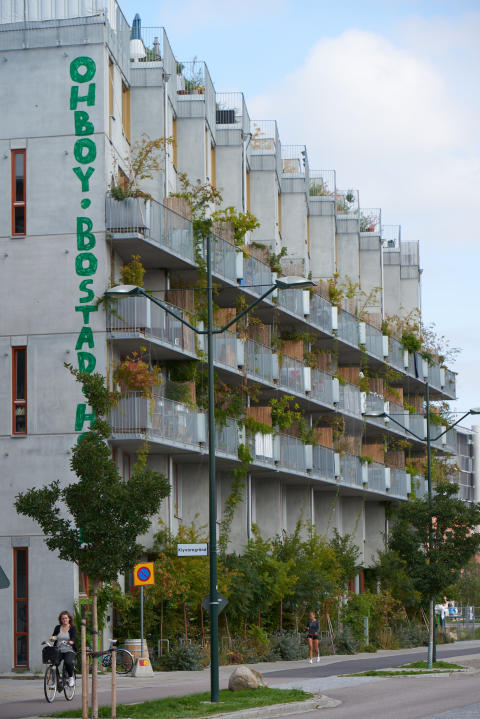 Ohboy, Lilla Varvsgatan 24 Malmö
