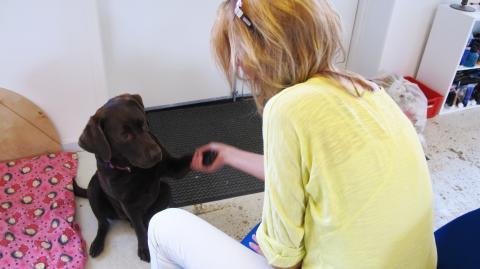 Hunden Choko giver varme og sjæl i fængslet