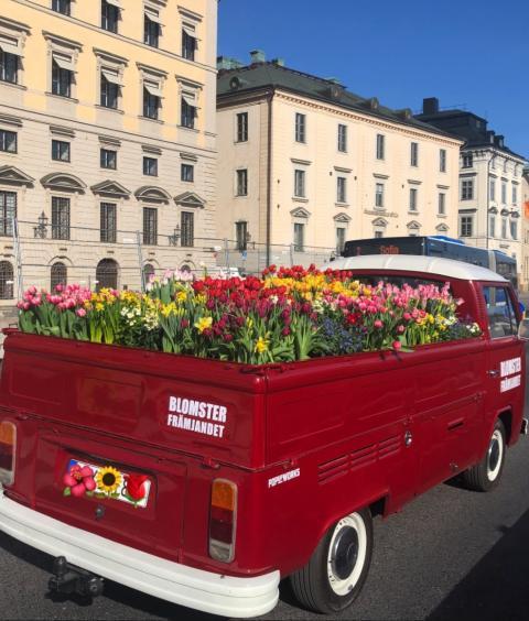 Hjälp oss att sprida blomsterglädje