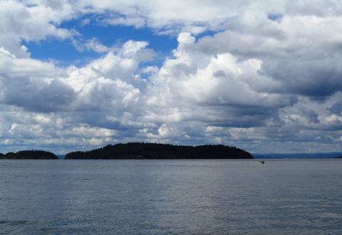 Oslofjorden under lupen