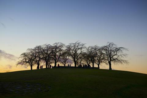 Världsarvet Skogskyrkogården, Almhöjden