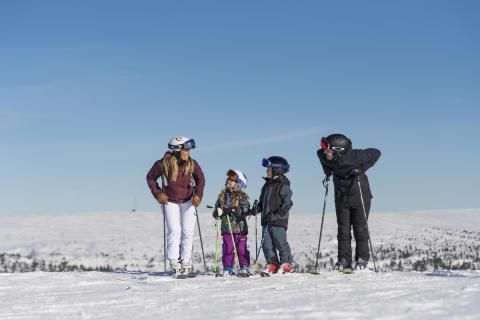 Rekordresultat igen genom stort intresse för alpin skidåkning och ökade reavinster