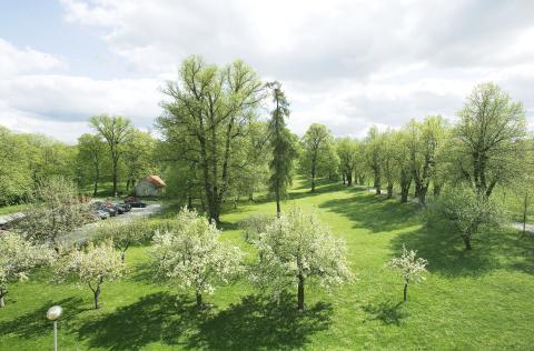 Folkhem i Ulfsunda Slottspark