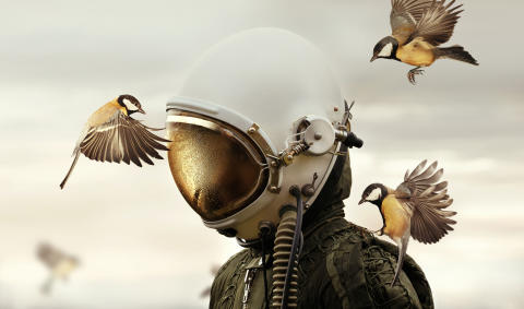 Megvannak az idei Sony World Photography Awards Nyílt versenyének győztesei