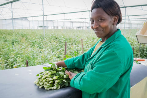 Monicah Wangui Kamau, blomsterarbeider, Kenya