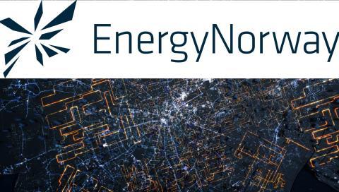 dLab på Energi Norges smart-grid konferens