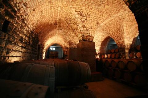 Chateau Musar cellar