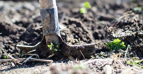 Säsongens sista veckor för tömning av trädgårdsavfall