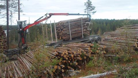 Skogsnäringens framtida kompetensförsörjning