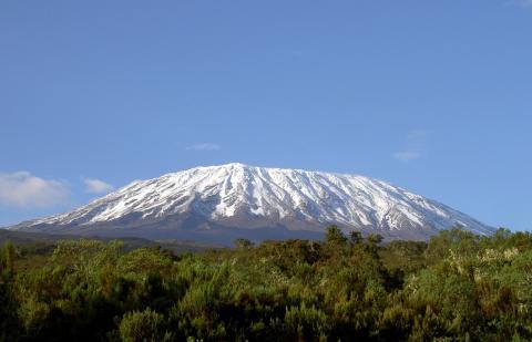 Patienten mit Multiplem Myelom und Unterstützer besteigen den Kilimandscharo und beschleunigen damit die Krebsforschung