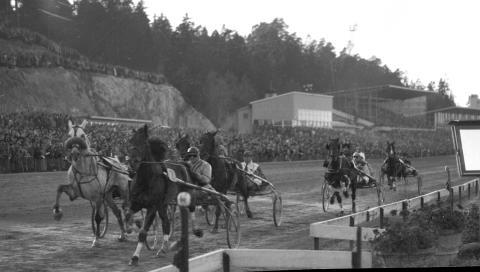 Solvalla på 1950-talet
