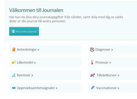 Nätjournal värdefull för patienter