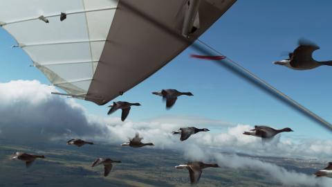Spread Your Wings Nicolas Vanier Still007