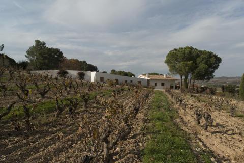 Mas del Serral 2007 - Kataloniens bästa vin nu i Sverige