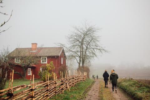 Så tycker utländska turister:  Nyfikenheten på svensk natur exploderar