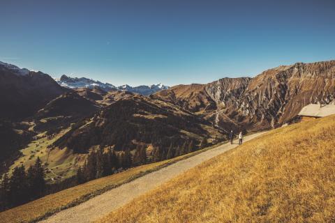 Berner Oberland: Wandern Tschentenalp
