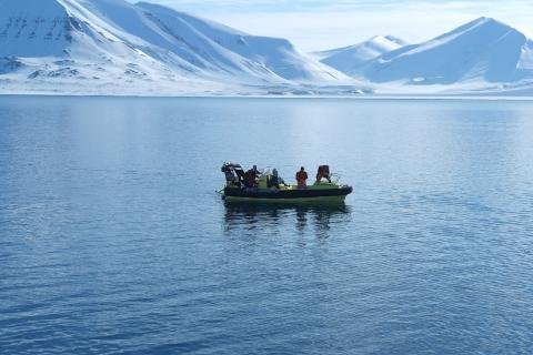 FAABulous cruise at Svalbard -light measurement