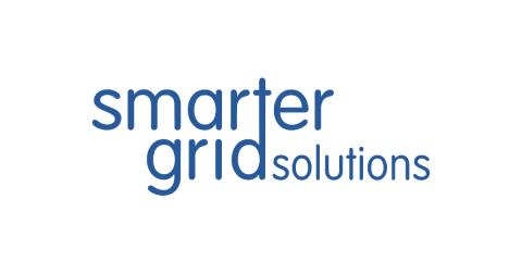 Distribution System Operators must treat data as crucially as price, capacity and reliability says Smarter Grid Solutions