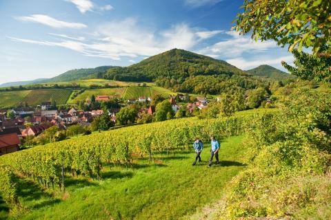 Temakampanjer för reselandet Tyskland fram till 2020