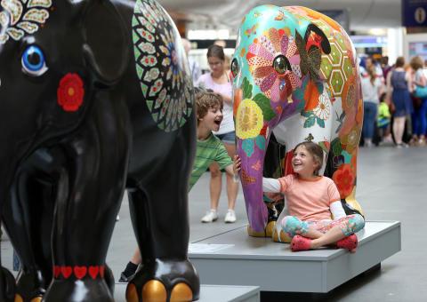Elephant Parade UK tour 2014