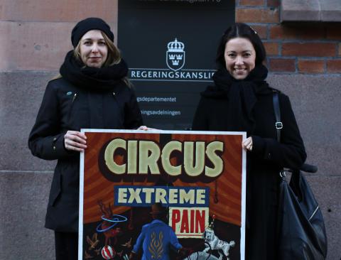 Djurens Rätt lämnar över 155 319 namnunderskrifter för ett förbud mot vilda djur på cirkus