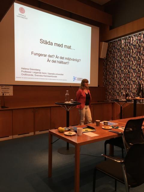 Frukostseminarium om miljövänlig städning - Helena Grennberg