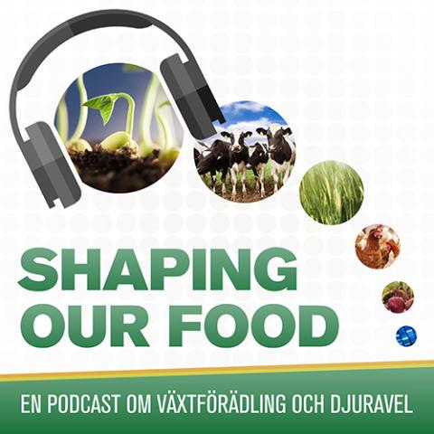 Ny podcast från SLU: Shaping our food