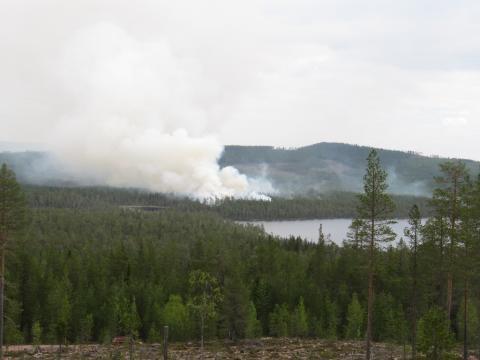 Nationell brandrisk - eldningsförbud i hela Dalarna