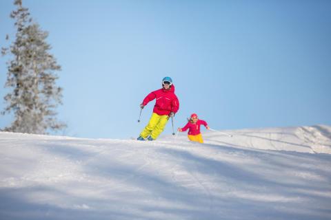 Stockholms närmsta skidanläggning