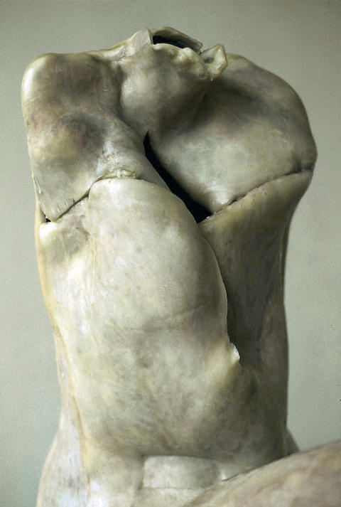 Berlinde De Bruyckere, La femme sans tête, 2004 Detail