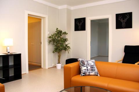 Stuen har blitt et hyggelig felles oppholdsrom i leiligheten.