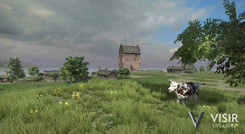 Wiks slott under medeltiden