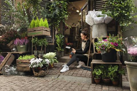 Ny Sifoundersökning: Var tredje svensk drömmer om att starta eget företag
